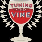 A fabulous wine adventure begins…